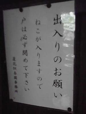 100601_0181