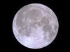 Moon981005